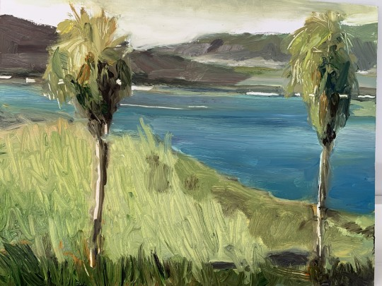 Lagoon by Torrey Pines