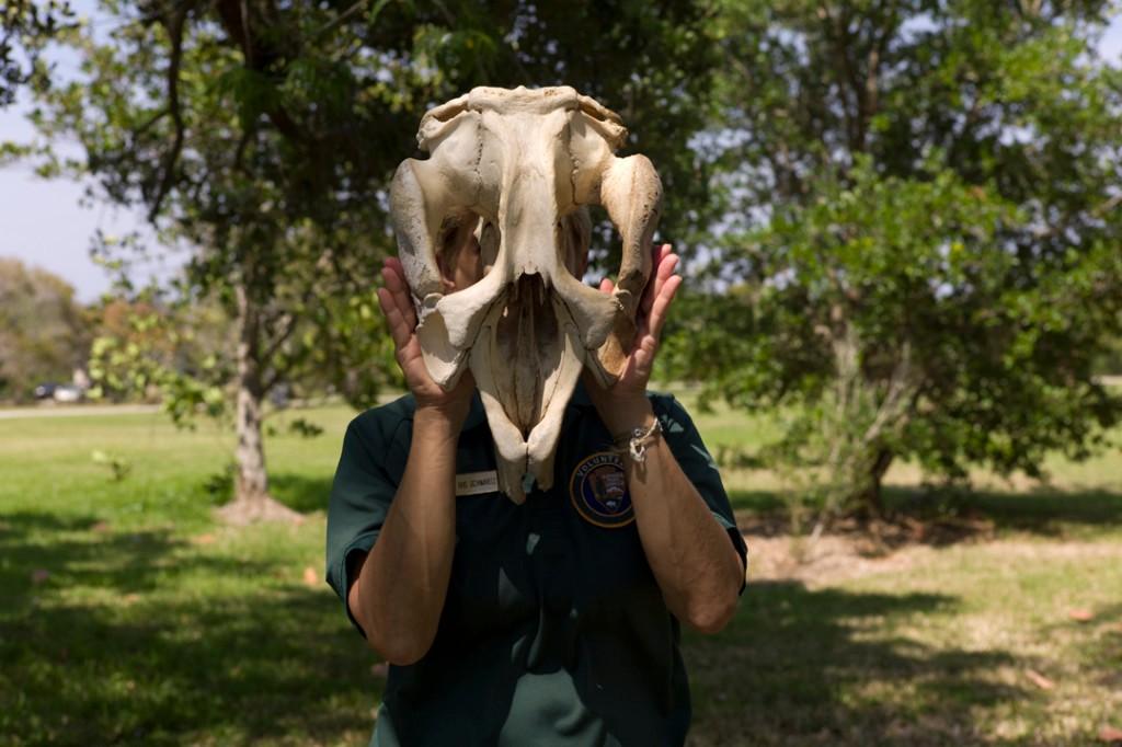 Artwork – Animal Masks #7, 2014