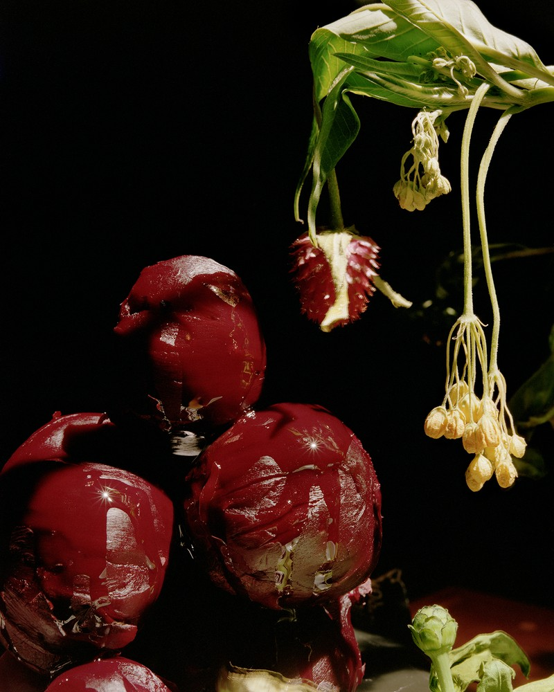 Artwork – Red Beets and Olive Oil, 2017