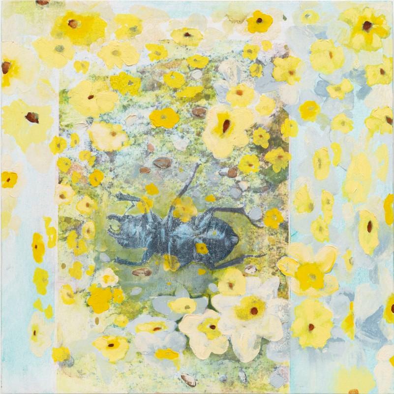 Artwork – Beetle Dreaming in Flowers, 2018