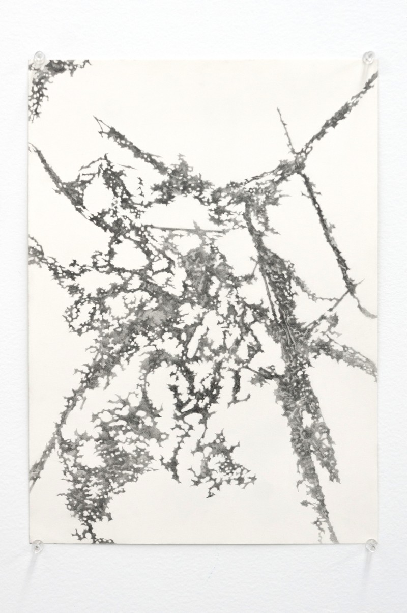 "Artwork – AJ Fusco - ""The concluding phase"", 2018"