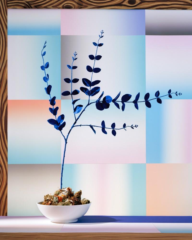 Artwork – Blue Window, 2016