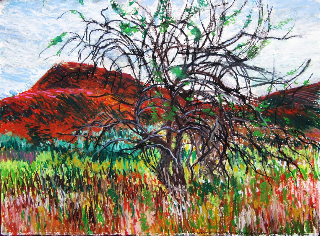 Artwork – Mt. Norwottuck and Apple Tree, Holyoke Mountain Range, Amherst, MA, 2020