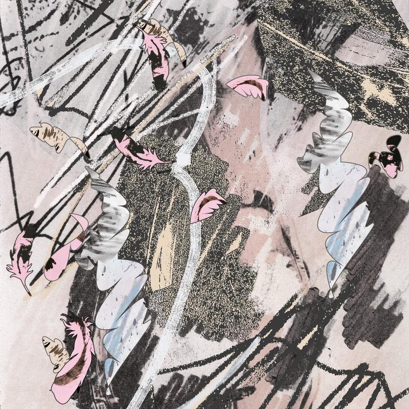 Artwork – Bird Crash 2, 2021