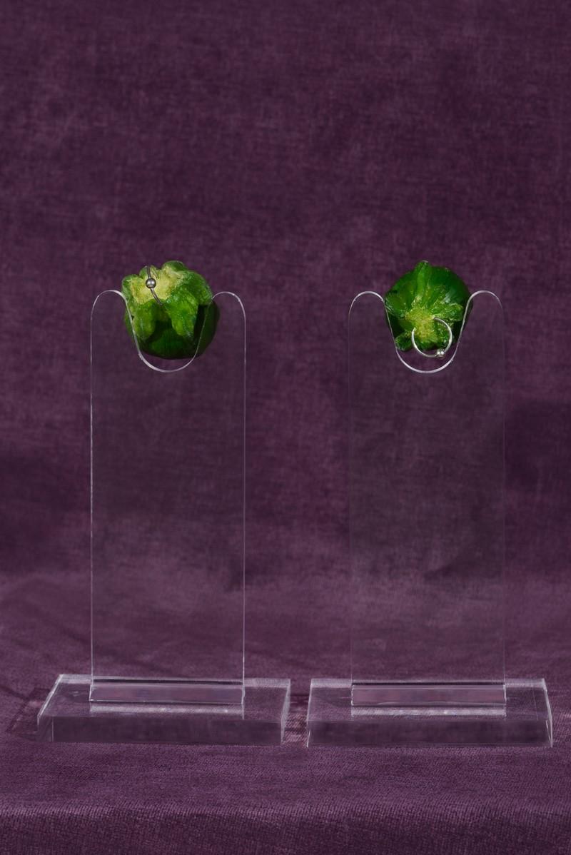 Artwork – Zucchini Nipples, 2018