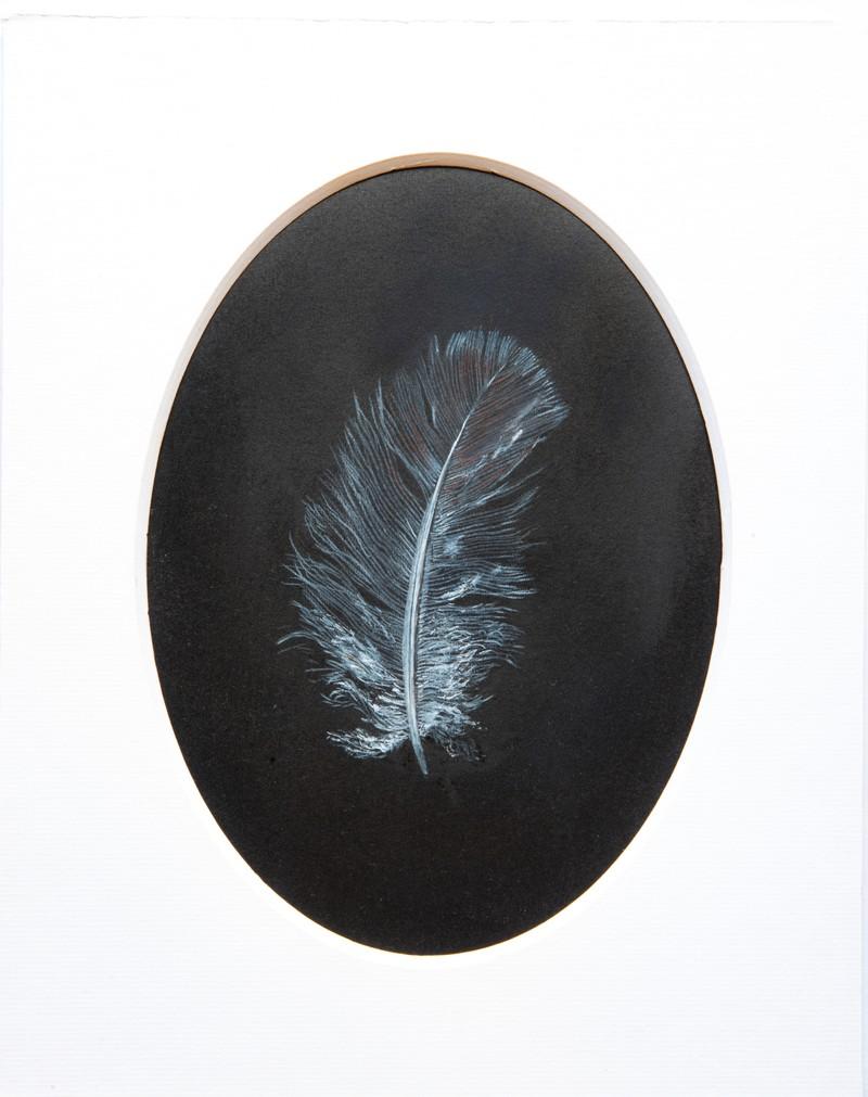 """Artwork – Jon Barraclough, """"Feather (After Ruskin)"""", 2019"""