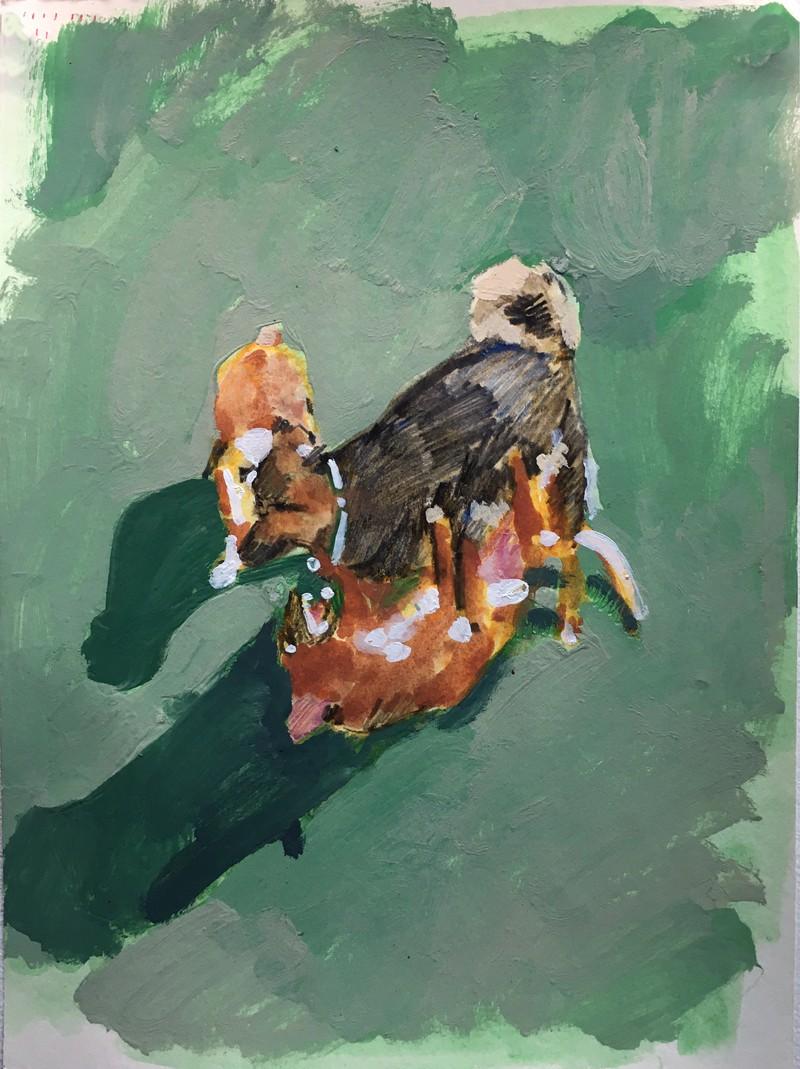Artwork – SARAH COOTE  :  Study for a Dog Park, 2020