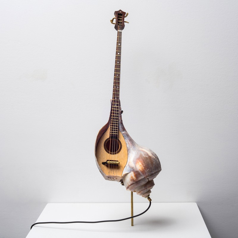Artwork – She Shall Mandolin, 2016