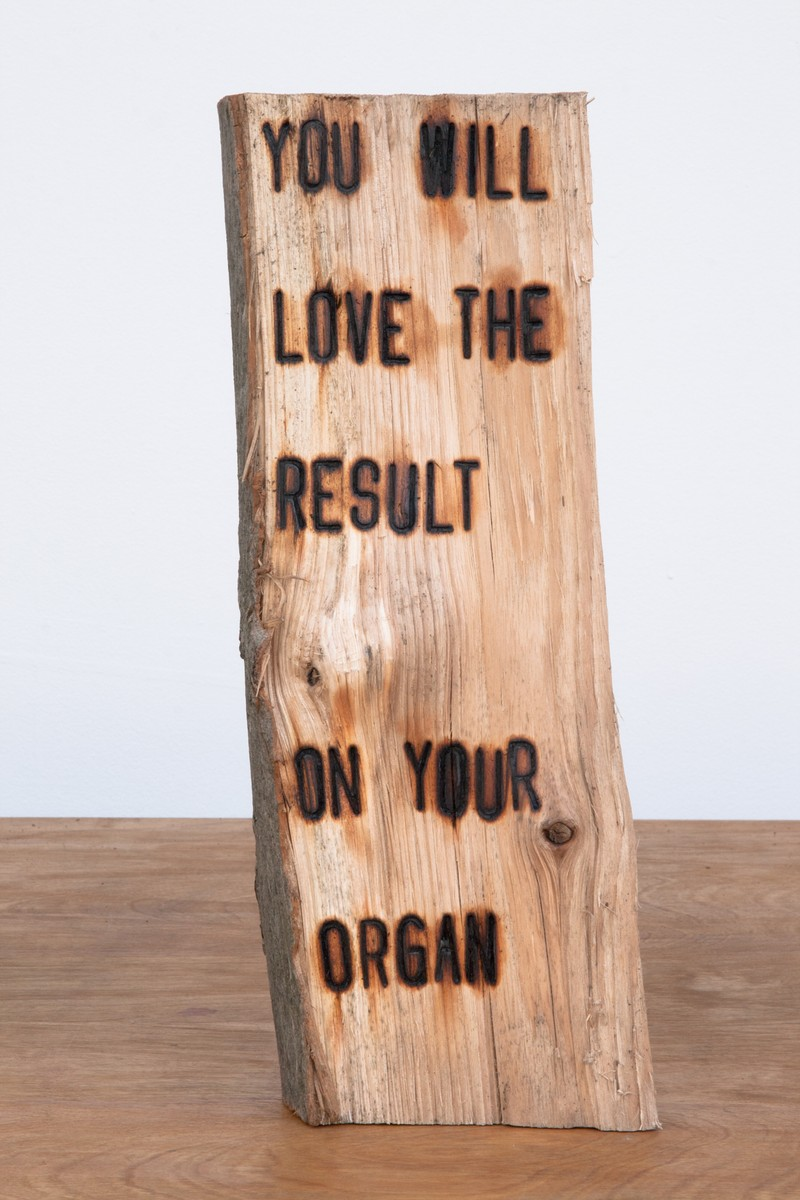 """Artwork – Branding Project #4:  I swear somewhere the truth lies within this wood - """"YOU WILL LOVE THE RESULT ON YOUR ORGAN"""", 2012"""