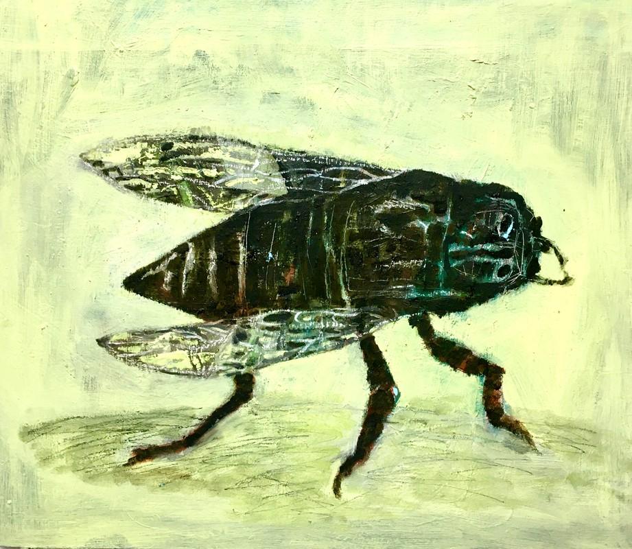 Artwork – Prehistoric Gnat, 2019