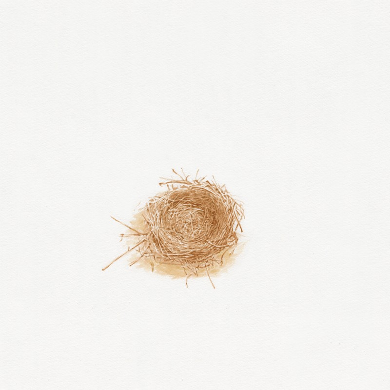 Artwork – Nest, 2007