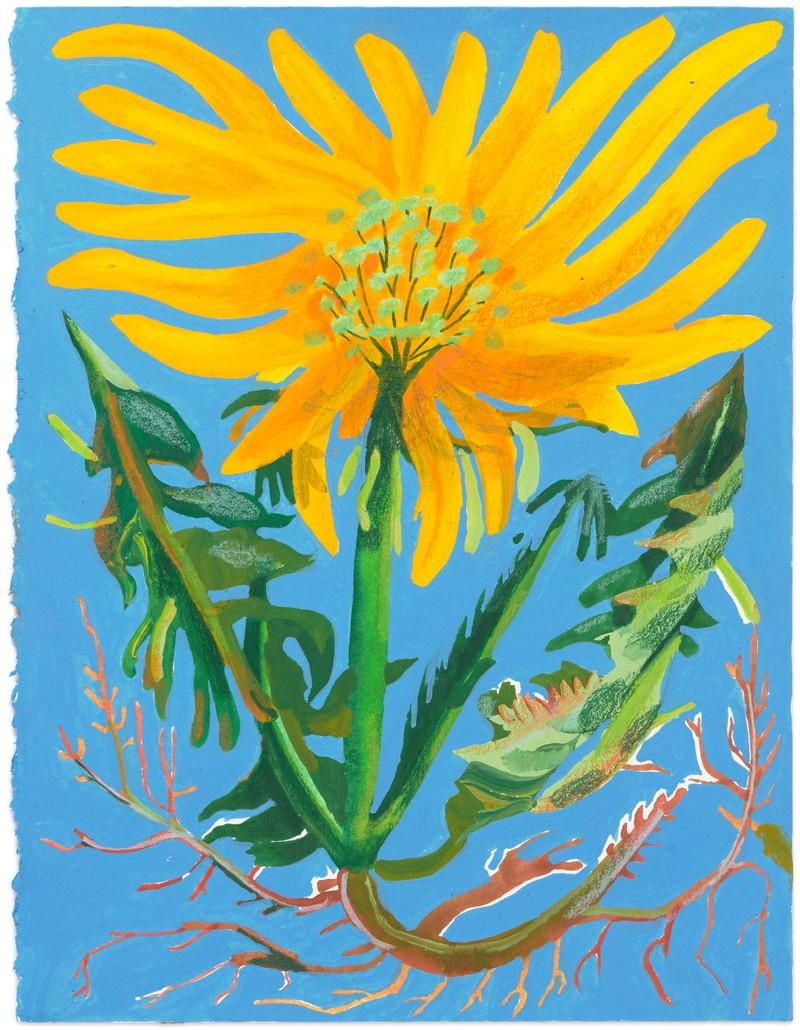 Artwork – Dandelion #2, 2020