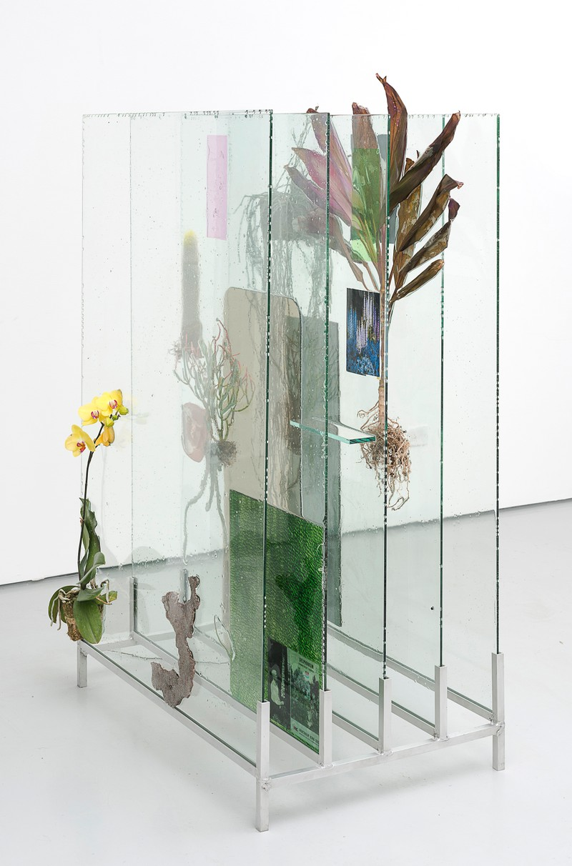 "Artwork – Heidi Norton, ""The Museum Archive (dedicated to Edward Steichen's Delphiniums, MOMA 1936), 2014"