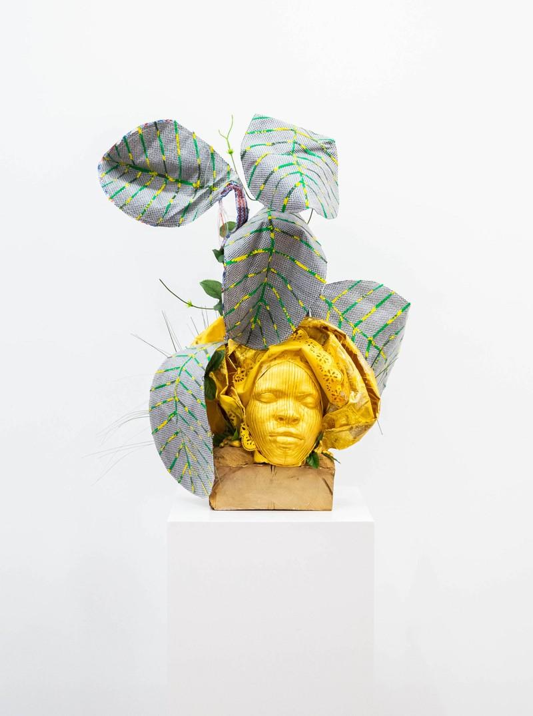 Artwork – Anacardium occidentalis (Epo cashew), 2019