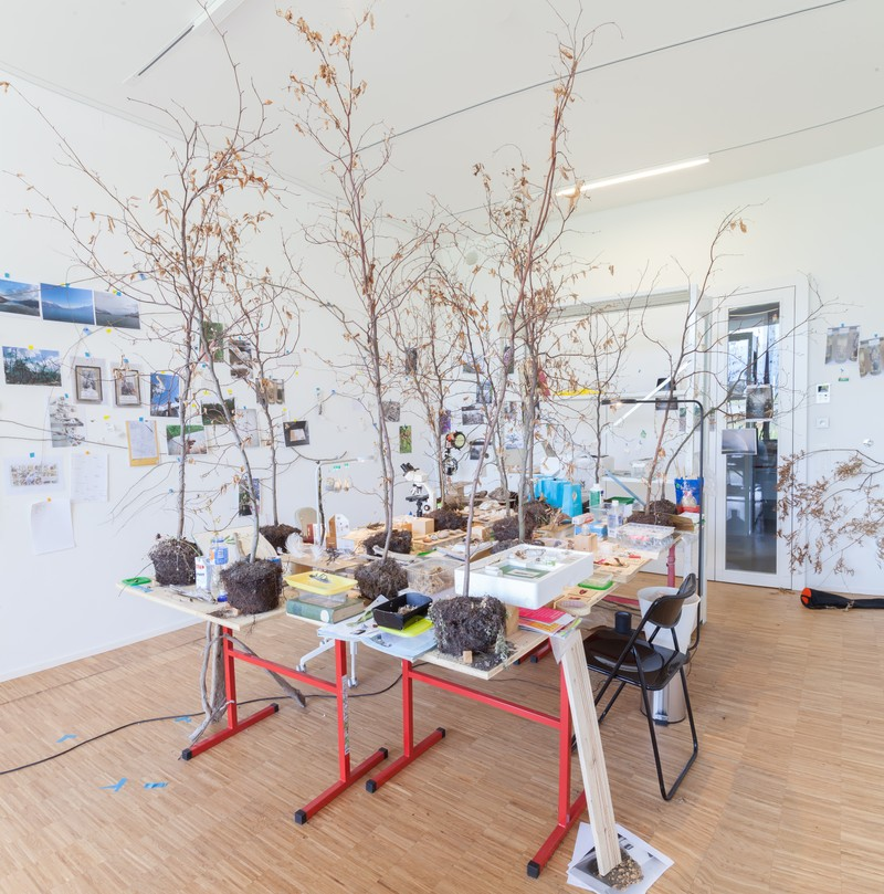 Artwork – Hêtre Gare, 2019
