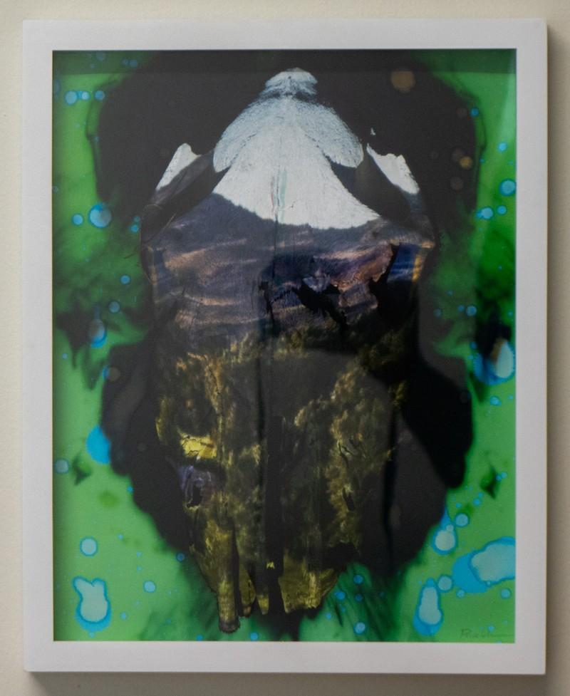 Artwork – Acid Washed Skullscape, 2020