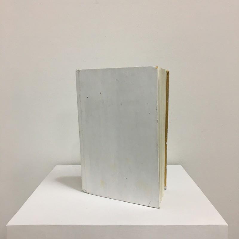 Artwork – CECILIA VIDAL  :  American Literature, 2015