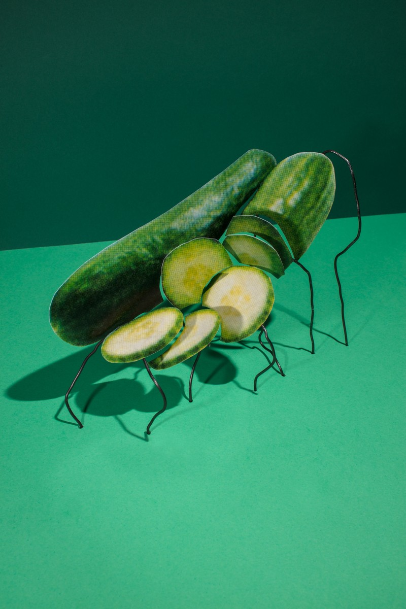 Artwork – Imported Seedless Cucumbers (Fresh) 2/$4, 2018