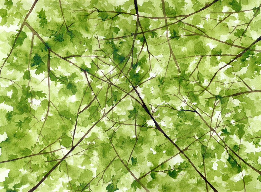 Artwork – Canopy, 2007
