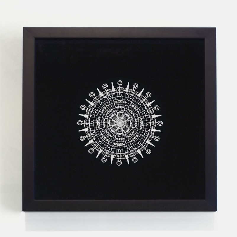 Artwork – Doilies (Influenza), 2004