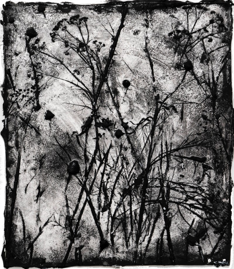 Artwork – Garden (weeds, skin #2), 2020