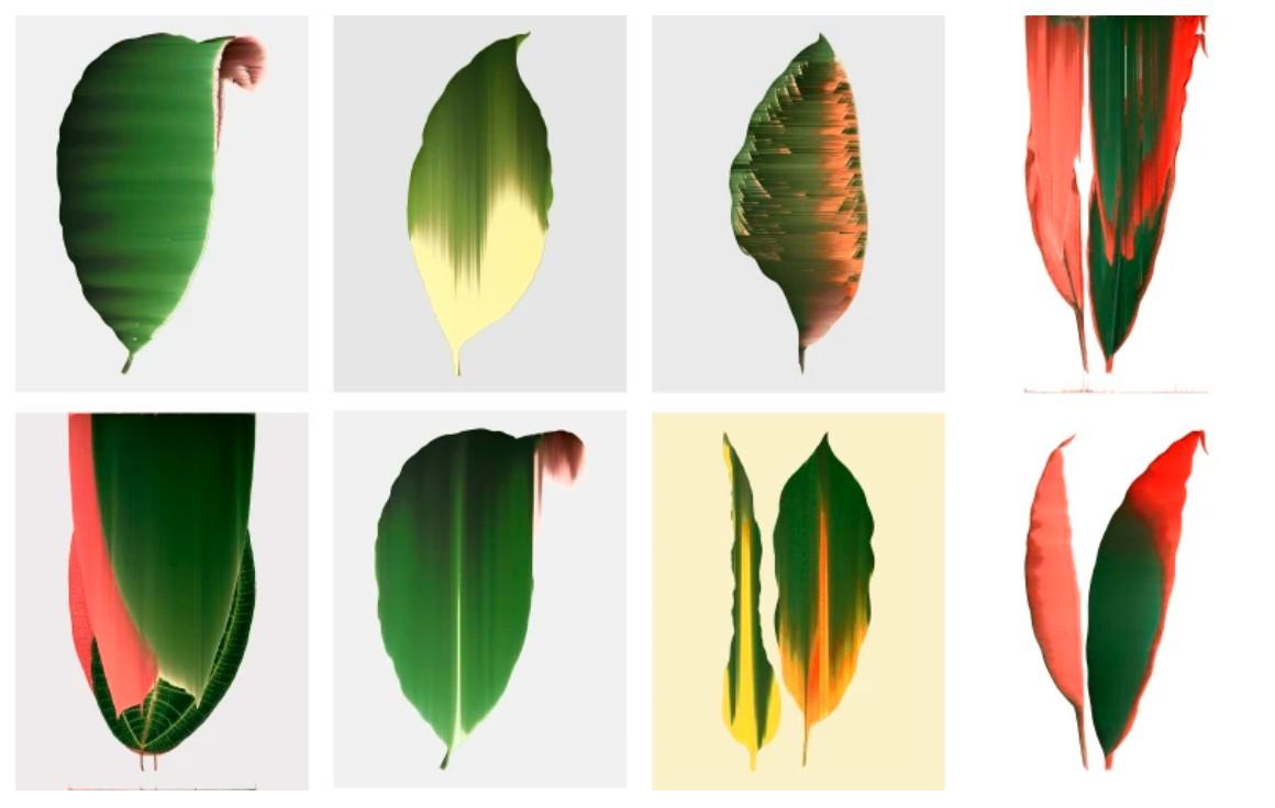 Artwork – Leaf Study, 2020