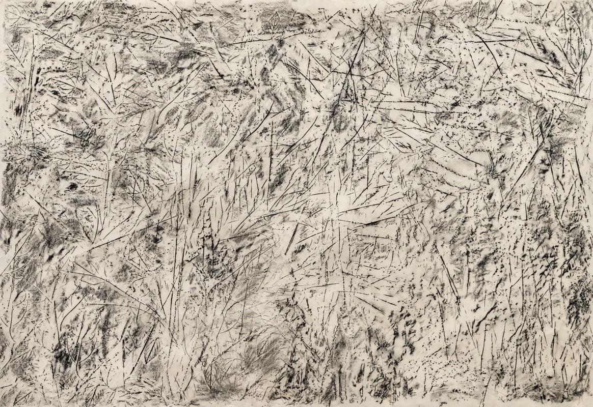 Artwork – Garden (frottage), 2020