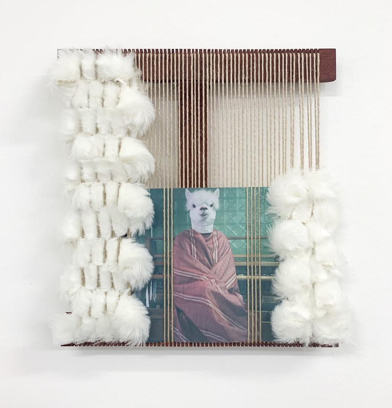 "Artwork – Cynthia Alberto ""Weaving Llama"", 2019"