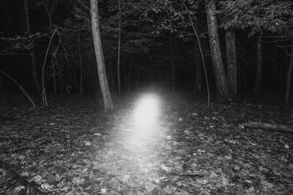 Artwork – Forest Spirit, 2019