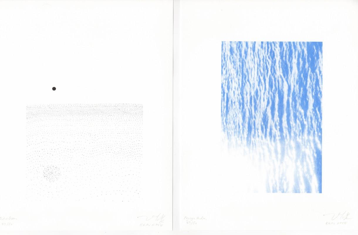 Artwork – Dot in Ocean & Paysage Hudson Diptych Print, 2018