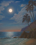 Moonlit Beach by Danielle Shier