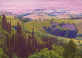 Tuscan Hillside by Christopher Kufner