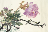 Purple Peony and birds by Demerie Faitler  方怡