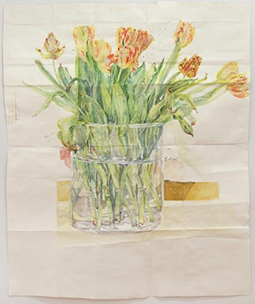 Dawn Clements Drawings/Watercolors | Events Calendar
