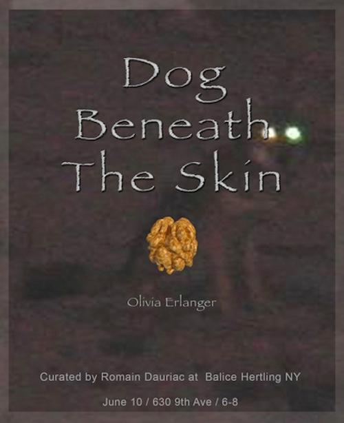 Olivia Erlanger Dog Beneath The Skin | Events Calendar