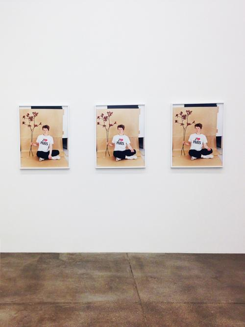 in Pictures for Annette Kelm at Andrew Kreps Gallery. Image for  Annette Kelm at Andrew Kreps Gallery