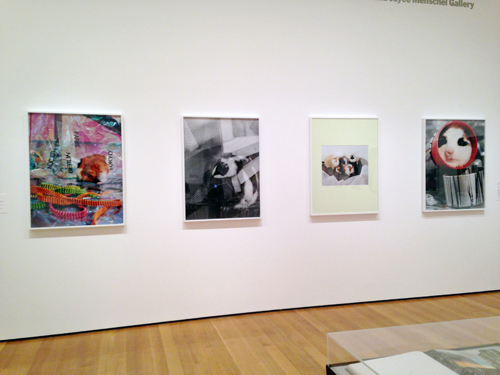 in Pictures for 'New Photography 2013' at MoMA. Image for Josephine Pryde in 'New Photography 2013' at MoMA