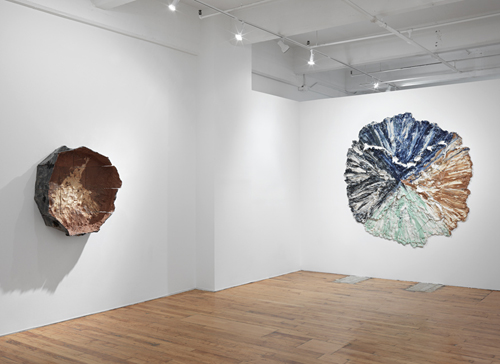 in Pictures for Brie Ruais at Nicole Klagsbrun. Image for Photo credit: Christopher Burke Studios.