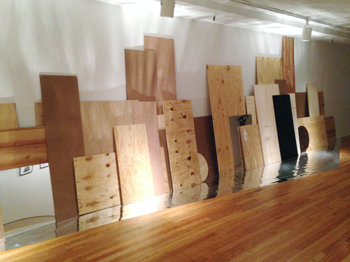 in Pictures for The Shadows Took Shape at The Studio Museum in Harlem. Image for Kira Lynn Harris