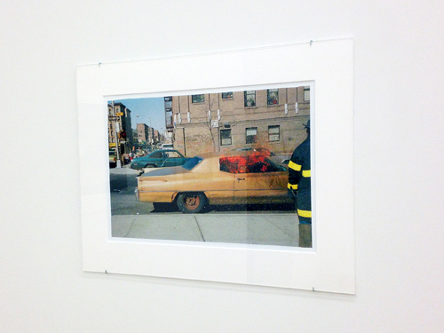in Pictures for Judy Linn and David Shaw at Feature Inc.. Image for Judy Linn