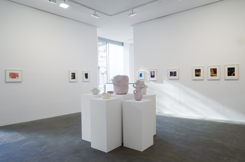 in Pictures for Beverly Semmes at Susan Inglett Gallery. Image for FRP, Installation view, 2014, Susan Inglett Gallery, NYC. Courtesy: Susan Inglett Gallery, NYC.