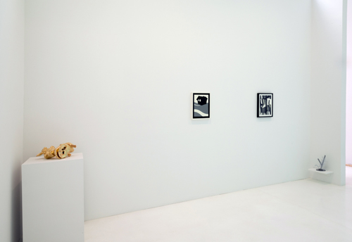 in Pictures for 'Particular Pictures' at The Suzanne Geiss Company. Image for Installation view of 'Particular Pictures' at The Suzanne Geiss Company, with work by Peter Harkawik and Laeh Glenn. Photo Adam Reich. Courtesy The Suzanne Geiss Company.