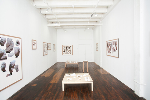 in Pictures for Clement Valla at TRANSFER. Image for Clement Valla, Surface Survey (installation view). Photo by Mike Garten. Courtesy of the artist and TRANSFER.