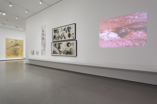 in Pictures for Sigmar Polke at MoMA. Image for Installation view of Alibis: Sigmar Polke 1963–2010, The Museum of Modern Art, April 19–August 3, 2014. © 2014 The Museum of Modern Art. Photo: Jonathan Muzikar. All works by Sigmar Polke © 2014 The Estate of Sigmar Polke/Artists Rights Society (ARS), New York/VG Bild-Kunst, Bonn, Germany