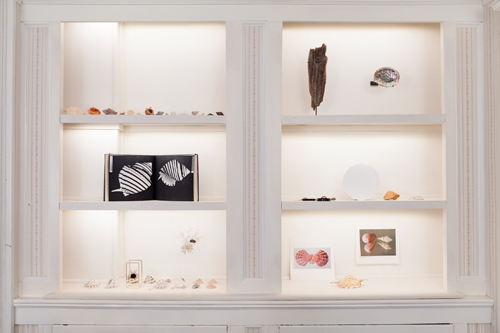 in Pictures for 'Another, Once Again, Many Times More' at Martos Gallery. Image for Installation View: Carol Bove and Barry Rosen, Untitled arrangement, 2014, assorted seashells collected by Barry Rosen and Carol Bove, dimensions variable. Photo by Charles Benton.