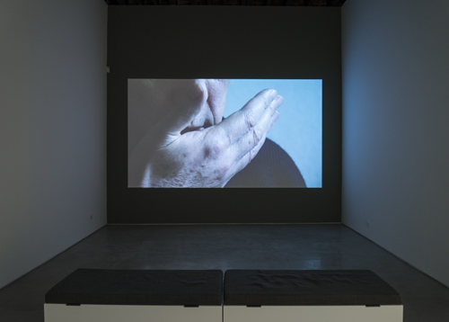 in Pictures for 'Itself Not So' at Lisa Cooley. Image for Imogen Stidworthy, I Hate, 2007, Single-channel HD video, 7:10 minutes. Courtesy of the artist; Matt's Gallery, London; Lisa Cooley, New York
