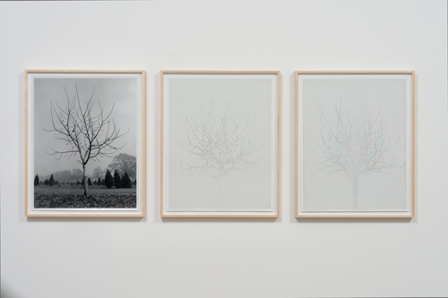 in Pictures for 'Charles Gaines: Gridwork 1974–1989' at The Studio Museum in Harlem. Image for Charles Gaines, Walnut Tree Orchard, Set 4 (version 2), 1975– 2014, Photograph, ink on paper, Triptych: 29 × 23 in. each; 311⁄2 × 251⁄2 × 11⁄2 in. (framed). Courtesy the artist and Susanne Vielmetter Los Angeles Projects. Photo: Robert Wedemeyer