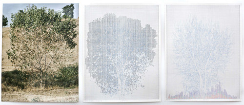 in Pictures for 'Charles Gaines: Gridwork 1974–1989' at The Studio Museum in Harlem. Image for Charles Gaines, Falling Leaves #10, 1978, Color photograph, ink on paper, Triptych: 20 × 16 in. each; 25 × 57 × 2 in. (framed). Collection of Daisy Addicott. Photo: Randy Vaughn-Dotta