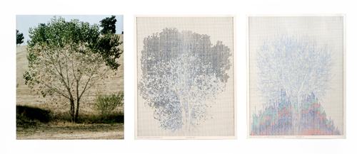 in Pictures for 'Charles Gaines: Gridwork 1974–1989' at The Studio Museum in Harlem. Image for Charles Gaines, Falling Leaves #5, 1978, Color photograph, ink on paper Triptych: 20 × 16 in. each; 25 × 57 × 2 in. (framed). Bank of America Art Collection