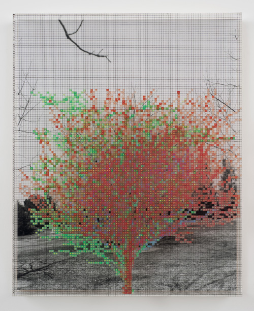 in Pictures for 'Charles Gaines: Gridwork 1974–1989' at The Studio Museum in Harlem. Image for Charles Gaines, Numbers and Trees IV, Landscape #4, 1989, Acrylic sheet, acrylic, paint, watercolor, silkscreen, photograph, 461⁄8 × 371⁄8 in. Courtesy the Hammer Museum, Los Angeles. Purchase.